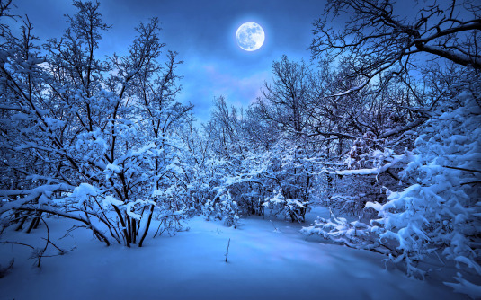 full-moon-blue-winter-wide