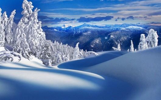 untouched-snow-scene