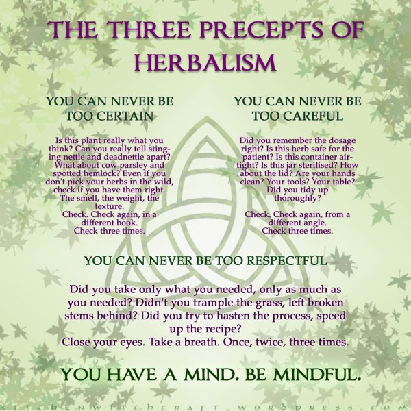 Herbalism Infographic