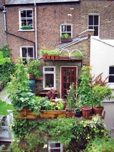 Don't let limited growing space stop you from creating a bountiful garden. Learn about this impressive urban garden in London at www.verticalveg.org.uk. PHOTO: VERTICALVEG/SARAH CUTTLE